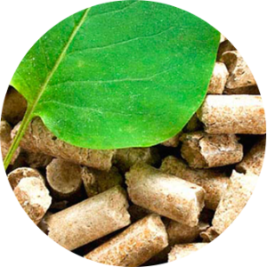 biomasa-rounded
